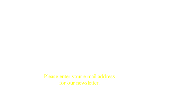 Please enter your e mail address 
